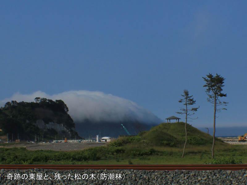 震災ガイド 野田村の奇跡の東屋