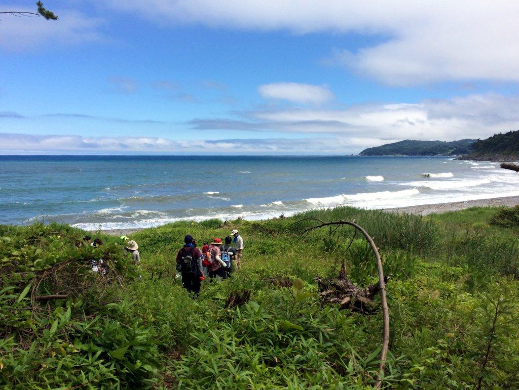 みちのく潮風トレイル みちのく潮風トレイル 野田村区間 玉川海岸