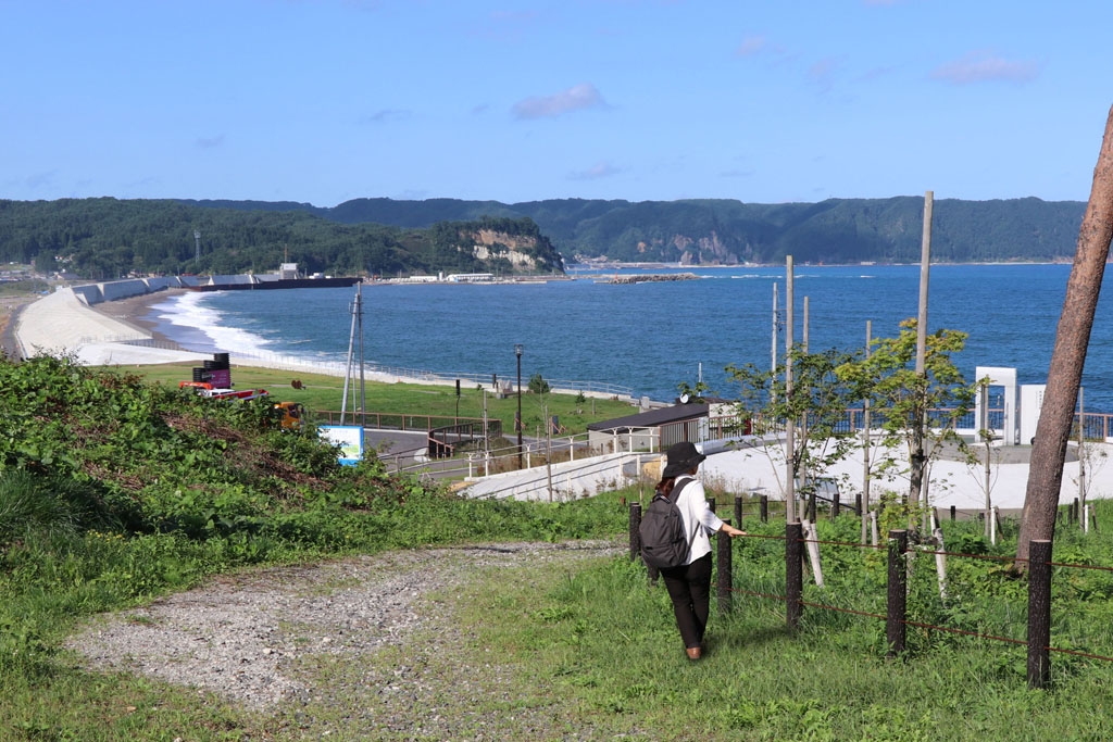 JR東日本 駅からハイキング&ウォーキング 野田村コース実施中