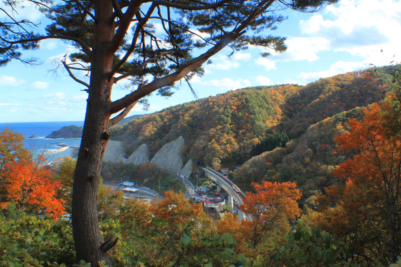 秋の山をかける三陸鉄道(岩手県野田村)