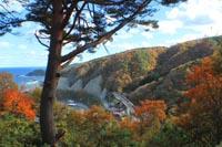 秋の山をかける三陸鉄道(野田村)