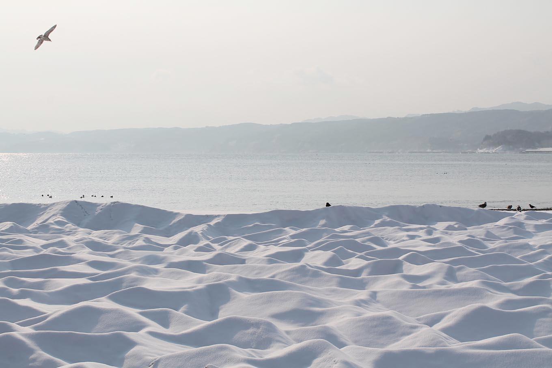浜の雪景色(岩手県野田村)