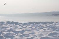 浜の雪景色