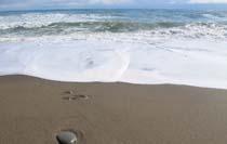 玉川海岸の砂浜(野田村)