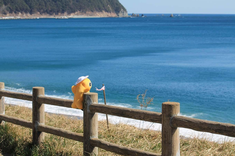 コバルトブルーの海(岩手県野田村)