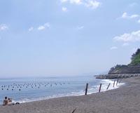 海水浴シーズン到来