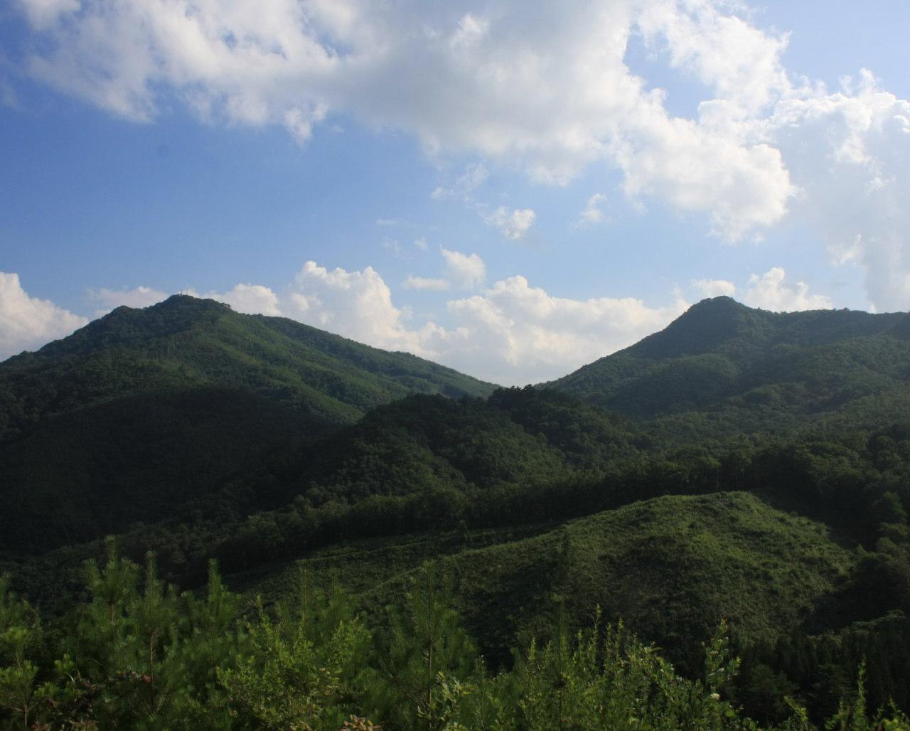 夏の和佐羅比山(岩手県野田村)
