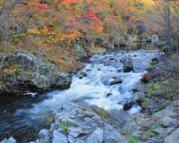 秋の安家渓谷